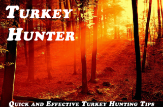 2016 Turkey Hunting Season Recap