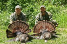 tag team turkey hunting